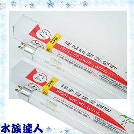 【水族達人】【T5燈管】伊士達ISTA《T5高效率植物燈管.39W T5-831》超明亮!