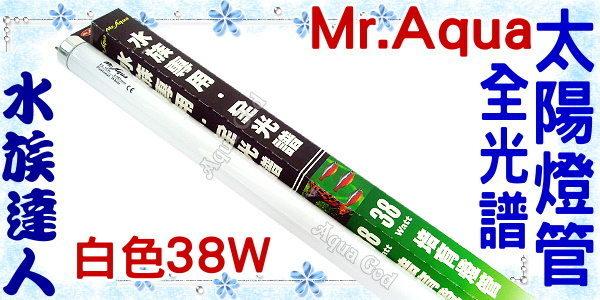 【水族達人】水族先生Mr.Aqua《T8全光譜太陽燈管.白色38W》高光色、高亮度、高穿透性