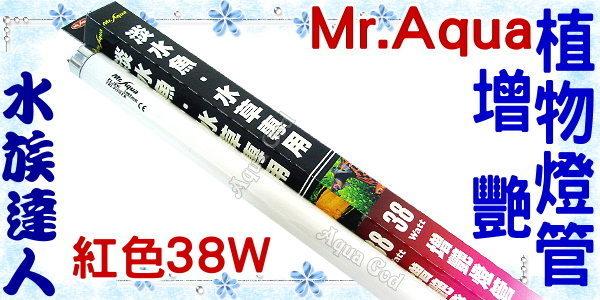 【水族達人】水族先生Mr.Aqua《T8淡水魚/水草專用增豔植物燈管.紅色38W》可增進水草及魚隻顏色
