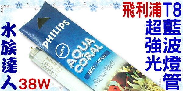 【水族達人】飛利浦PHILIPS《超強光T8藍波燈管.38W》品質保證讚!