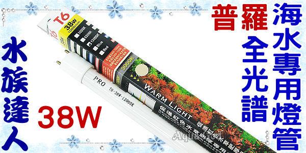 【水族達人】【T6燈管】普羅《全光譜海水專用燈管.38W》 超明亮!