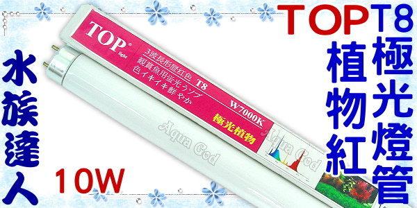 【水族達人】TOP《T8極光燈管(植物紅).7000K(10W)》超明亮!