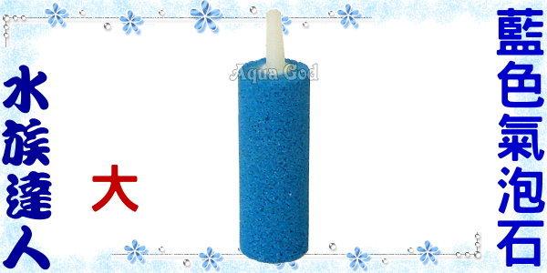【水族達人】《藍色氣泡石.大》打氣馬達必備用品