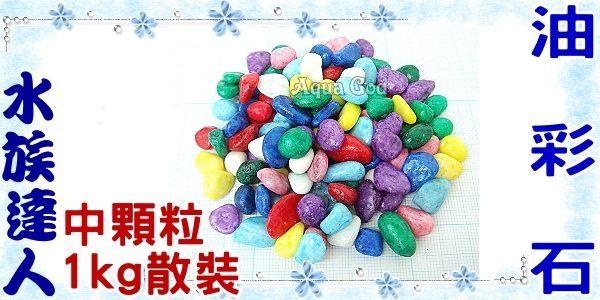 【水族達人】彩色的石頭《油彩石.中顆粒1kg散裝》裝飾、舖缸,最美麗的裝飾!
