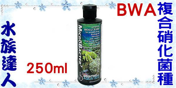 【水族達人】BWA《複合硝化菌種.250ml.W070》快速建立過濾系統 / 淡海水皆可用
