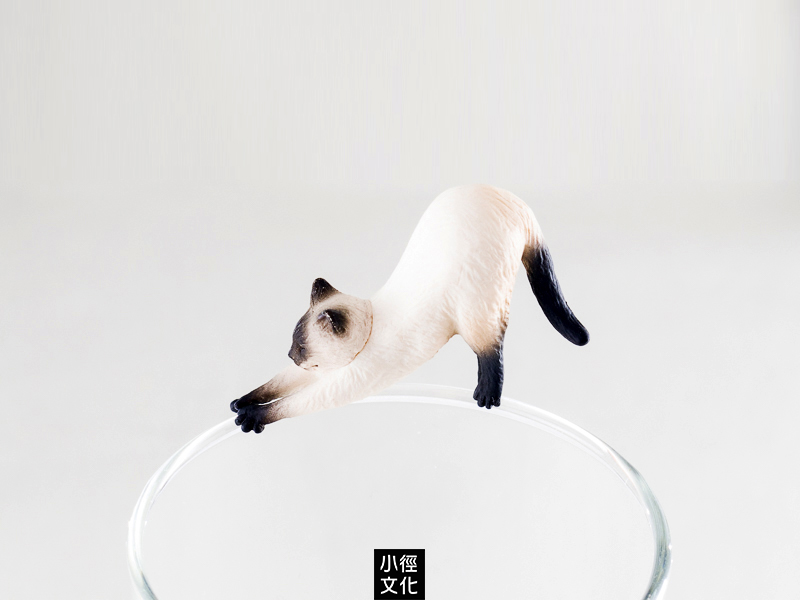 *小徑文化*日本進口 KITAN 奇譚 貓咪杯緣 第二彈 系列 - 暹羅貓 ( PU-CA-03 )