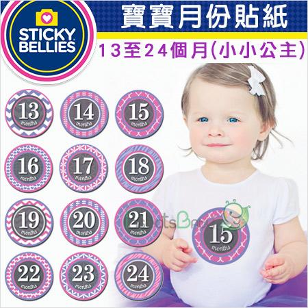 +蟲寶寶+【美國Sticky Bellies】寶寶創意好禮成長紀錄-寶寶月份貼紙13-24個月-(小小公主)《現+預》