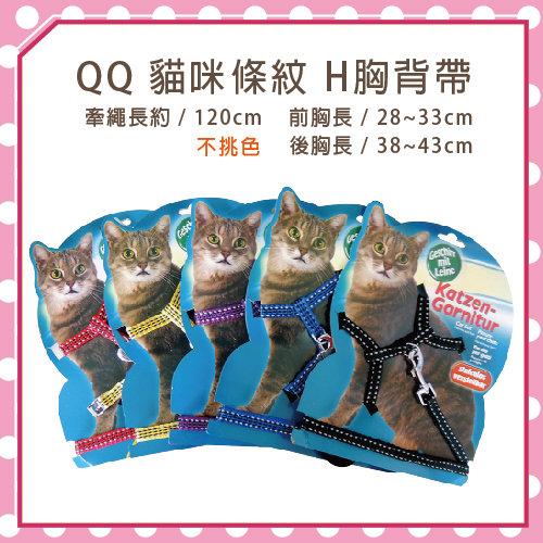 【力奇】QQ 貓咪條紋H胸背帶(WD30018)-160元【隨機出貨,恕不挑色】>可超取(K002B02)