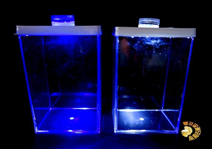 [橘子空間裝置藝術] 特製壓克力鬥魚缸.小魚缸 +藍白光LED燈 ☆人造花.插花配件.居家.店面.櫥窗.玄關.大廳擺飾☆