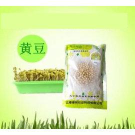 【芽苗種子-黃豆芽-200g】黃豆芽種子 黃豆 豆芽機也可以用,約200g/包,4包/組-5101004