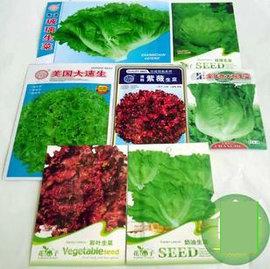 【菜種子-生菜組合-7包/組】水培蔬菜 蔬菜種子 觀賞蔬菜,組合自選,7包/組-5101003