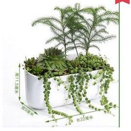 【室內植物牆-連體盆-ABS-22*9*11.5cm-1個/組】花牆組合壁掛花盆個性 模擬人造立體綠化植物牆(不含植物)-5101020