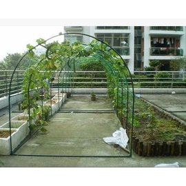 【植物爬藤瓜架-圓頂-L400*W200*H200cm-1套/組】樓頂種菜爬藤 菜架 攀藤架子 植物園藝支架-5101013