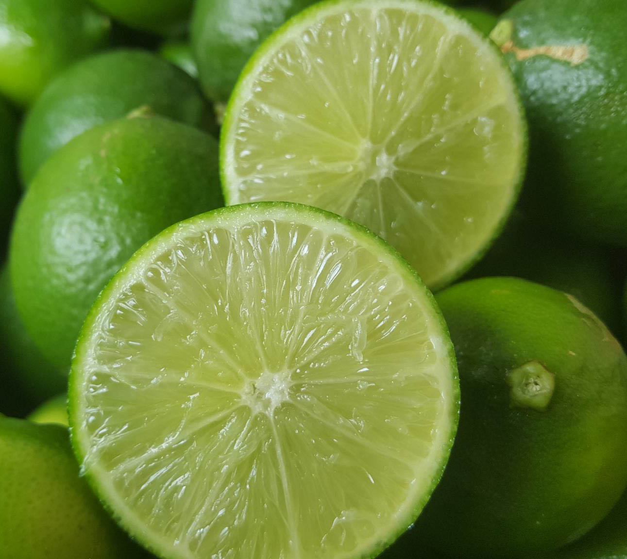 【無籽檸檬-5台斤/箱-1箱/組】安全水果,預訂,3天出貨,楊家枇杷果園產地直送-27163