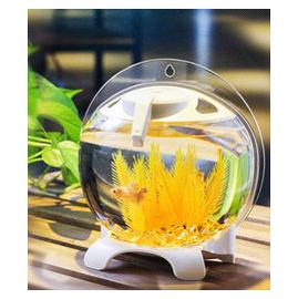 【小蘋果款式魚缸-亞克力-直徑22*高22.5CM-1個/組】桌面創意設計多功能牆掛桌面魚缸擺設 禮品-7721002