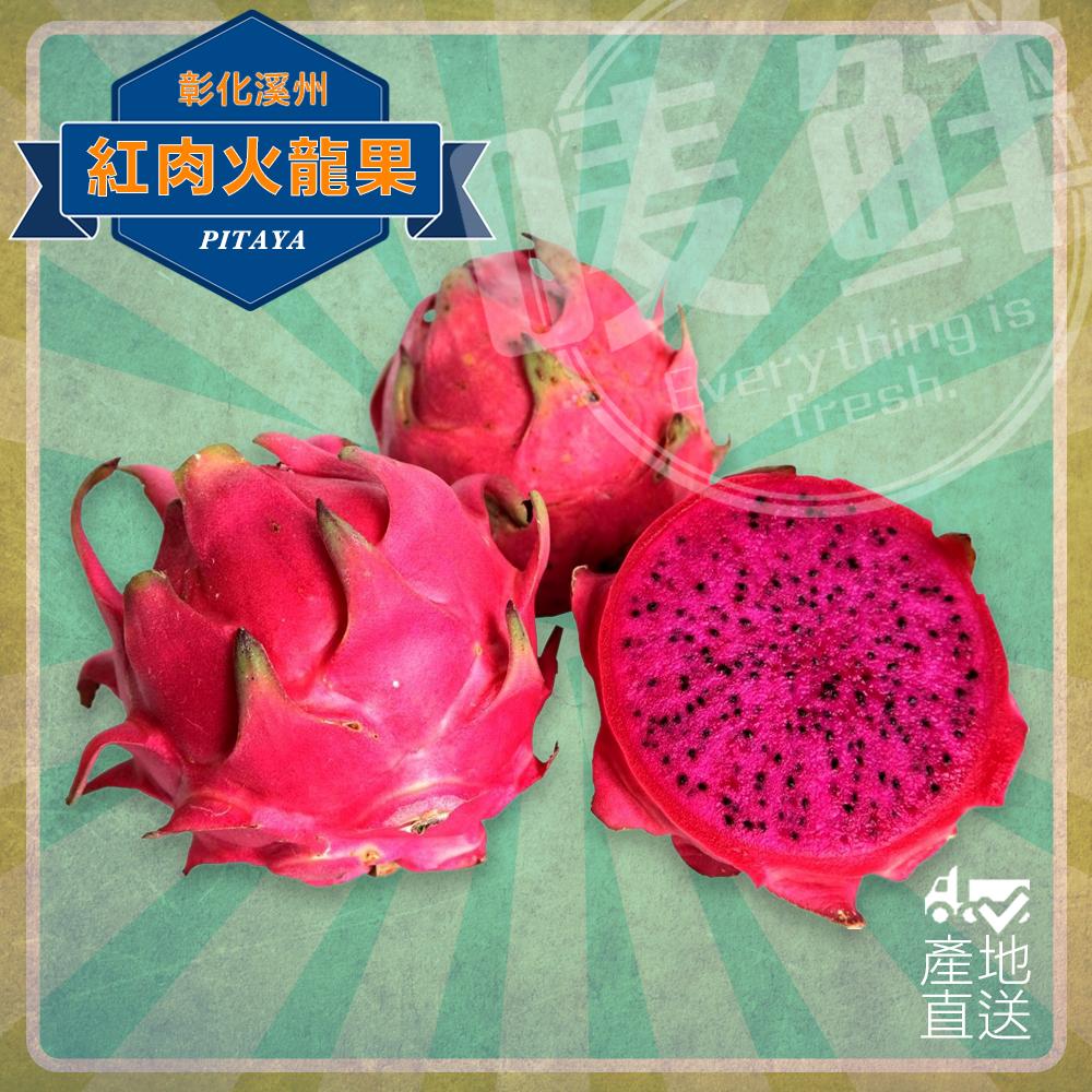 【嘜鮮】台灣中部大顆級紅肉火龍果/顆