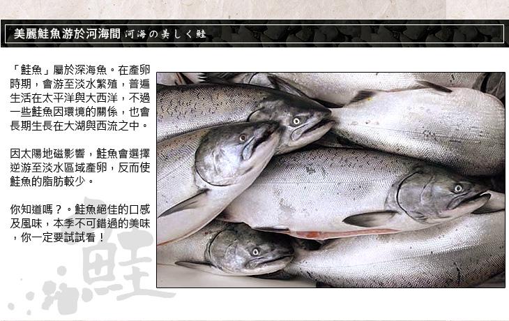 """鮮凍鮭魚頭"""" height="""