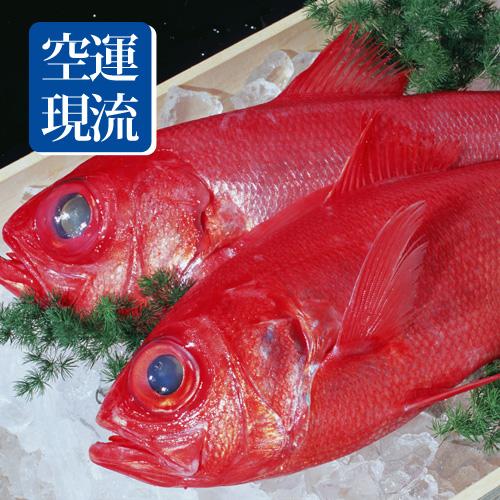 【台北濱江】空運現流新鮮金目鯛1kg/尾