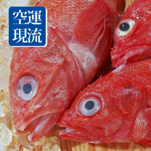 【台北濱江】空運現流深海紅寶喜知次400g/尾