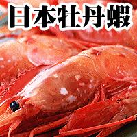 【已售完】【台北濱江】SJ牡丹蝦(1kg/15~18隻)
