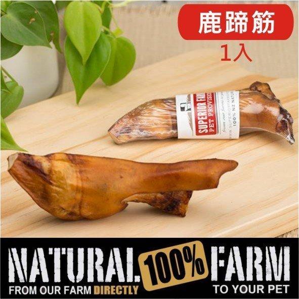 紐西蘭Natural Farm100%純天然鹿蹄筋-1入 純天然的潔牙骨 Pet's Talk