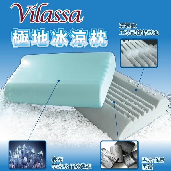 法國薇瑞莎(VILASSA)極地冰涼竹碳枕-二入