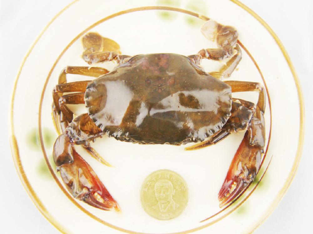 超大軟殼蟹【平均一隻88元起一盒共8隻】