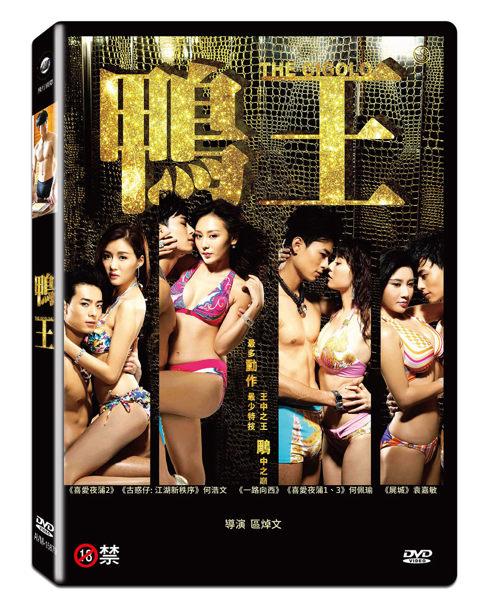 鴨王 DVD The Gigolo (音樂影片購)