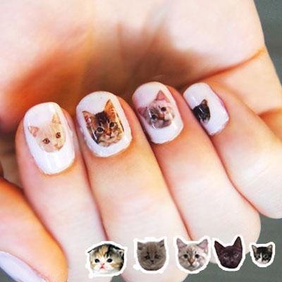 ☆雙兒網☆【AO2280】寫真動物貓咪狗狗指甲貼 熊熊/小鹿 可搭配指甲油-01