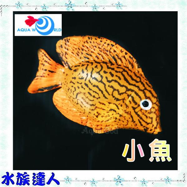 【水族達人】【造景裝飾】水世界AQUA WORLD《small fish  螢光小魚 G-083-C》裝飾