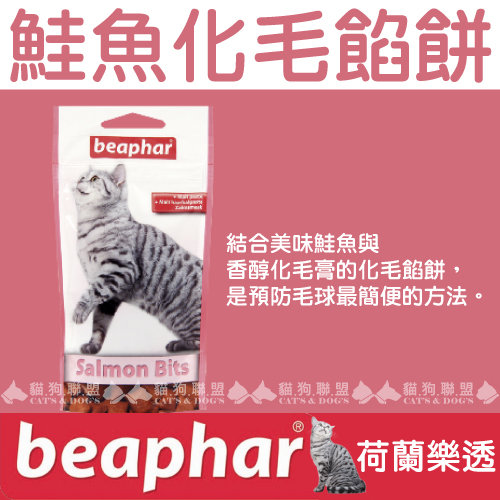 +貓狗樂園+ 荷蘭beaphar【樂透愛貓鮭魚化毛餡餅。小。35g】90元