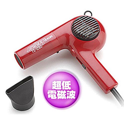 【達新】專業吹風機 TS-1280