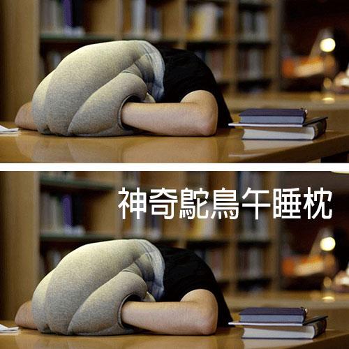 【賣到缺貨!!終於到貨!!】神奇鴕鳥午睡枕頭 防止流口水嘴開開~~午睡神器