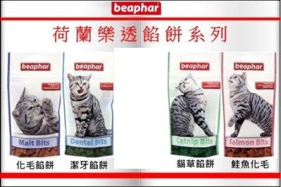 荷蘭 beaphar 樂透餡餅系列 35g 化毛/鮭魚化毛/貓草/潔牙