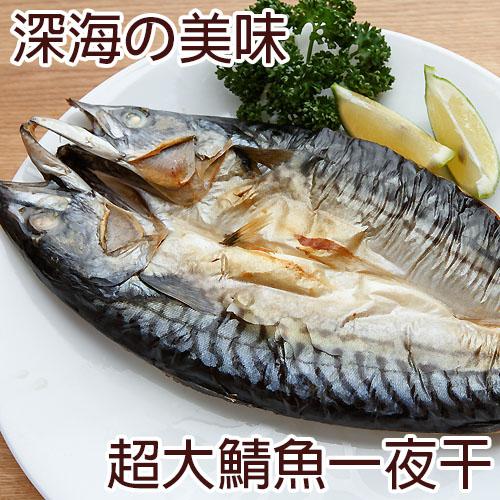 一番嚴選!超巨大挪威薄鹽鯖魚一夜干 (350~400g/包)!!熱銷破5000份!!