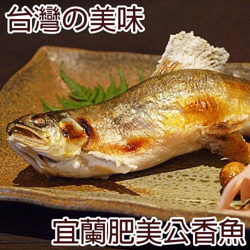 一番嚴選!外銷日本!台灣宜蘭肥美香魚 (淨重140g±10%/尾)