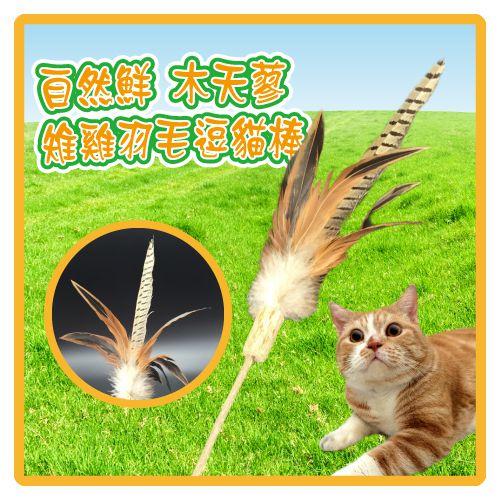 【力奇】自然鮮 木天蓼雉雞羽毛逗貓棒(45-NF-032) -130元【快來讓貓咪一起動吃動】(I102A32)