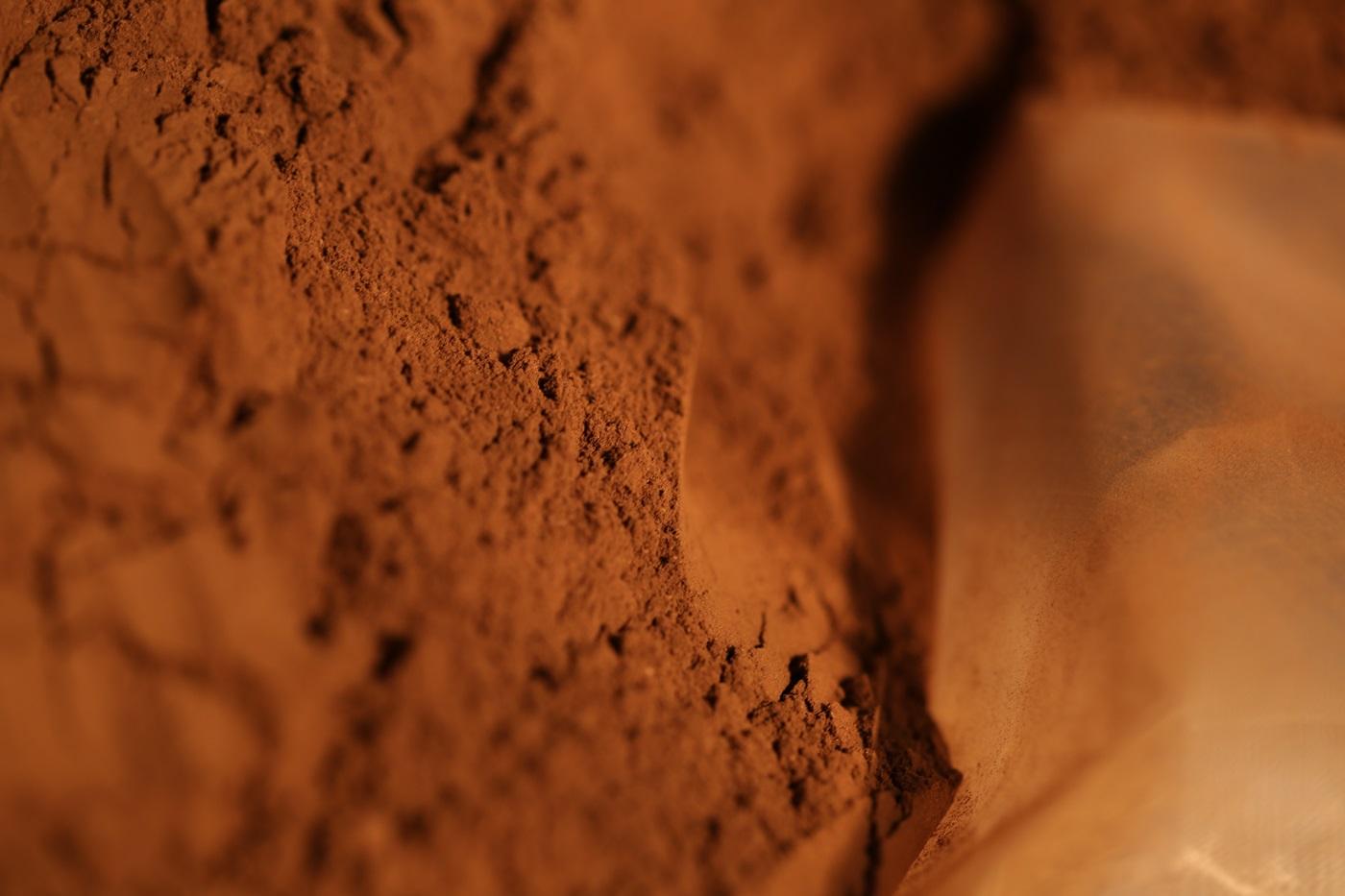 一縷清香 [頂級台灣肖楠 600g易開罐裝] 台灣香 沉香 檀香 富山 如意  印尼 越南 紅土 奇楠 大樹茶