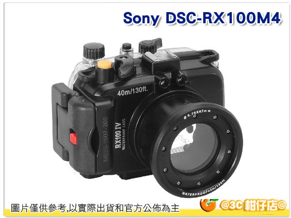 Sony DSC - RX100M4 潛水殼 - 黑 浮潛 游泳 海邊 活動 相機 下水 拍照 佳美能公司貨