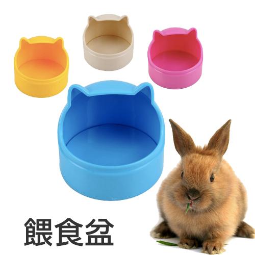 【小樂寵】多彩立體貓形餵食器