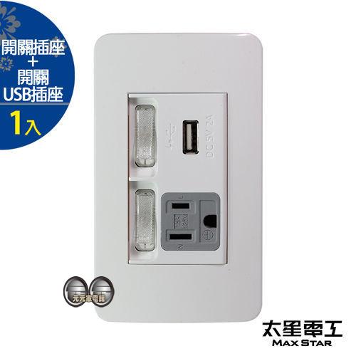 太星電工 聯蓋帶開關-接地單插座 / USB單插座 A415D