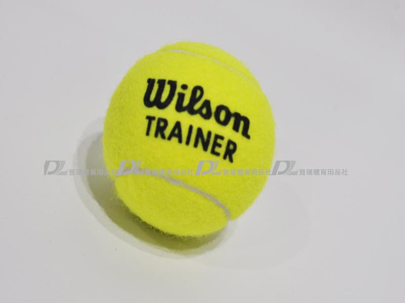 【登瑞體育】Wilson TRAINER練習球_WRT132200