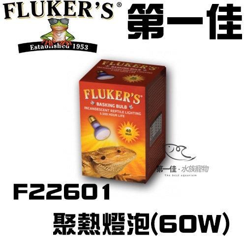 [第一佳 水族寵物] 美國FLUKER`S聚熱燈泡F22601 60W日間爬蟲類聚熱燈泡黃光給寵物溫暖的冬天