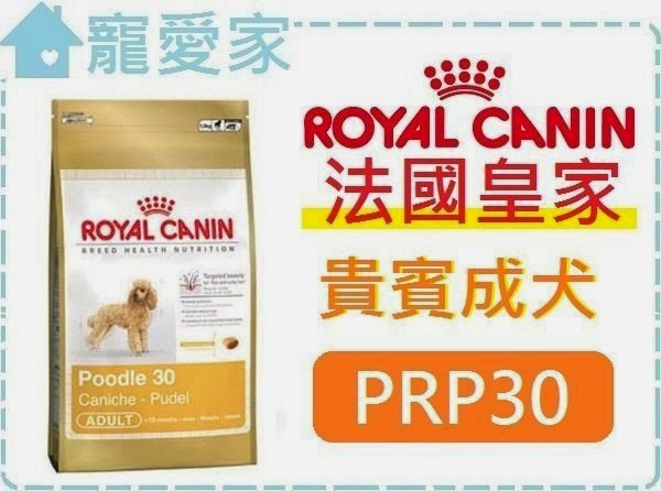 ☆寵愛家☆法國皇家PRP30貴賓成犬1.5公斤.