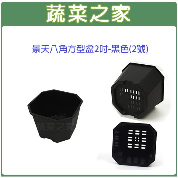 【蔬菜之家005-D115-BL】景天八角方型盆2吋-黑色(2號)