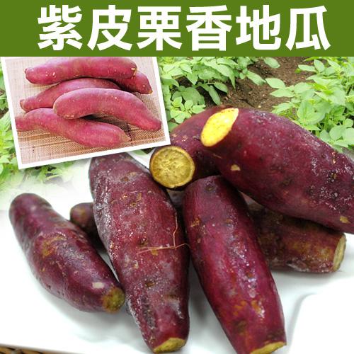 【築地一番鮮】紫皮栗香黃金地瓜1包(約重1kg/包)
