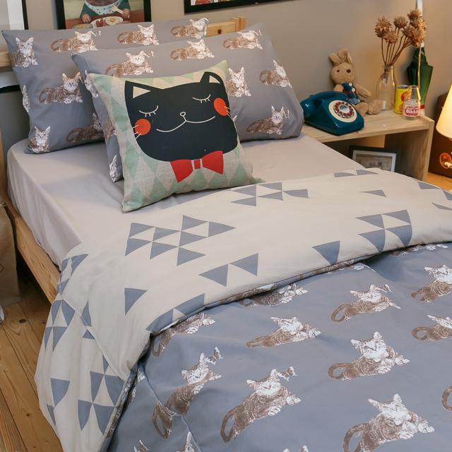 Iron cat 鐵灰小貓【床包駝色素色】單人/雙人熱賣組  舒適磨毛布 台灣製造