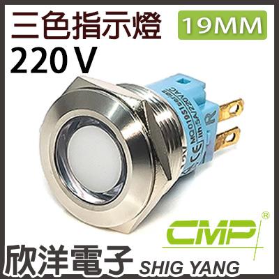 ※ 欣洋電子 ※19mm不鏽鋼金屬平面三色指示燈 AC220V / S19041-220RGB 紅綠藍三色光 CMP西普