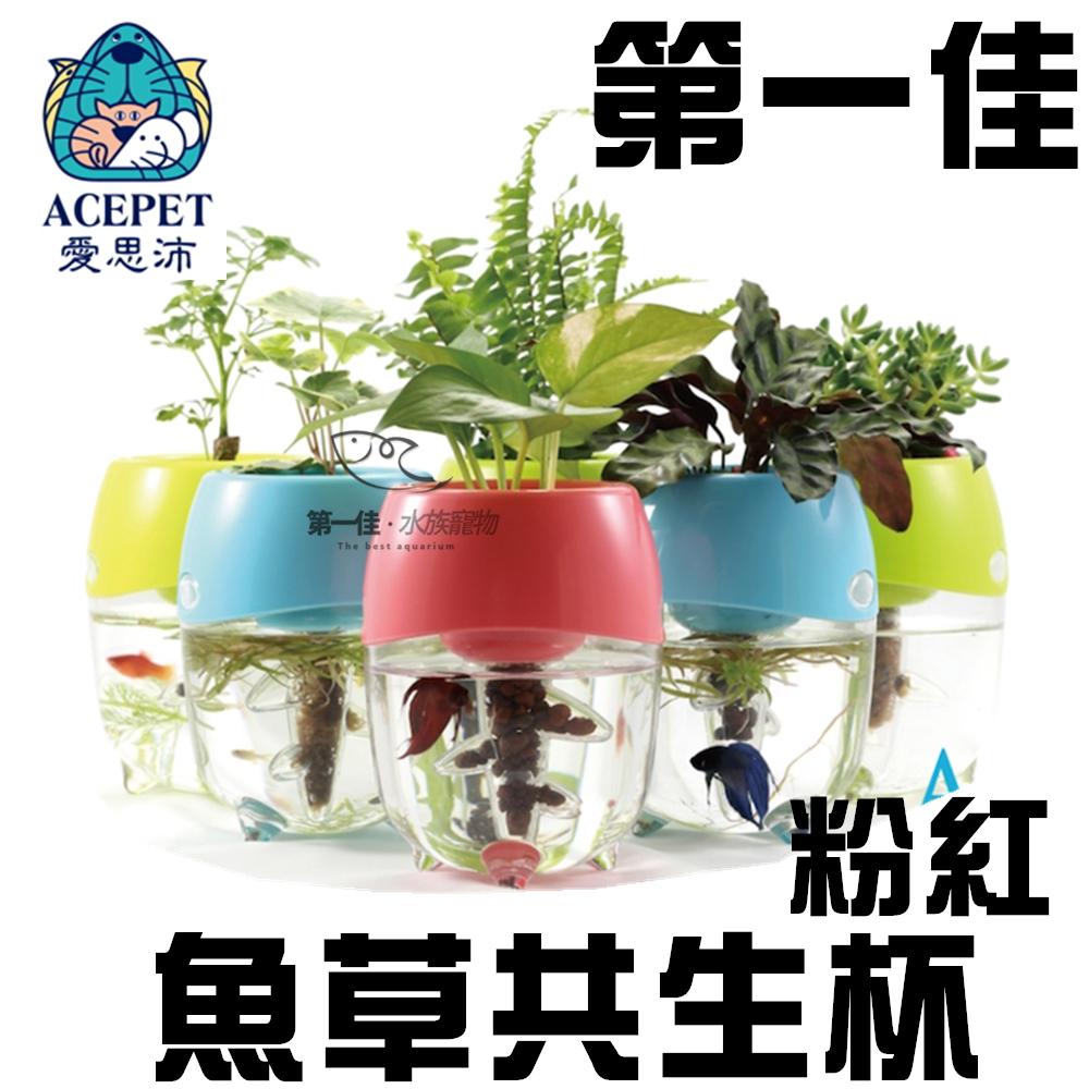 [第一佳 水族寵物]ACEPET愛思沛 魚草共生杯-粉紅 PP-FF922-P 台灣製 迷你小魚缸 水族箱 飼育箱