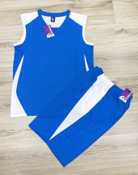 【巷子屋】FEARLESS 男款專業吸濕快乾大網眼籃球球衣 比賽服 運動服 [FM60] 藍白 MIT台灣製造 超值價$238
